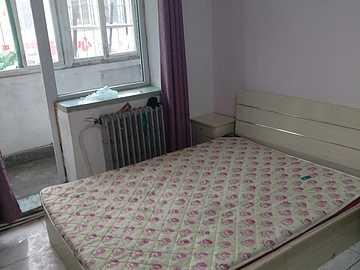 1室1厅1卫-41.56㎡
